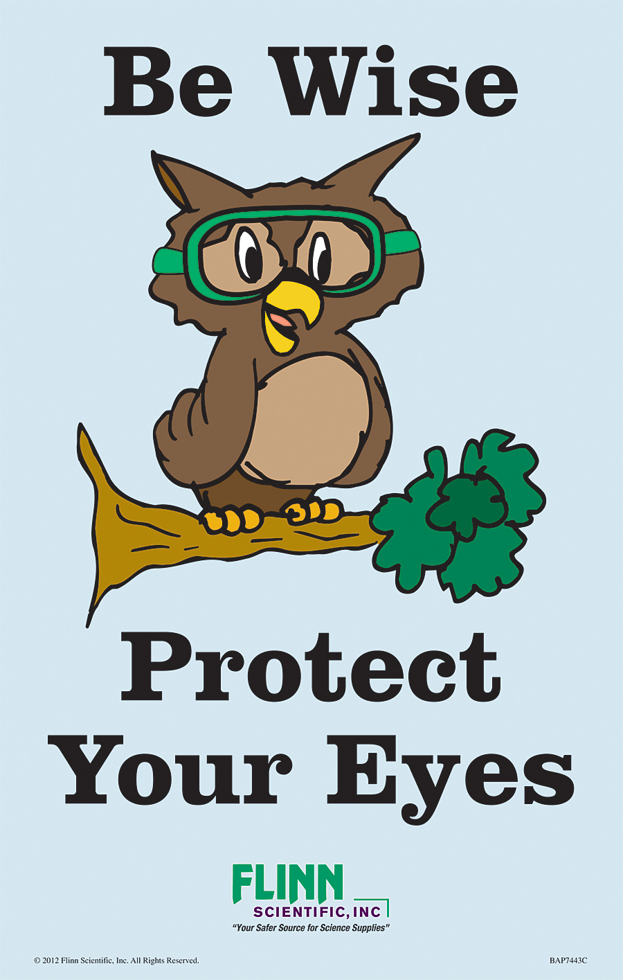 flinn favorite goggle safety posters
