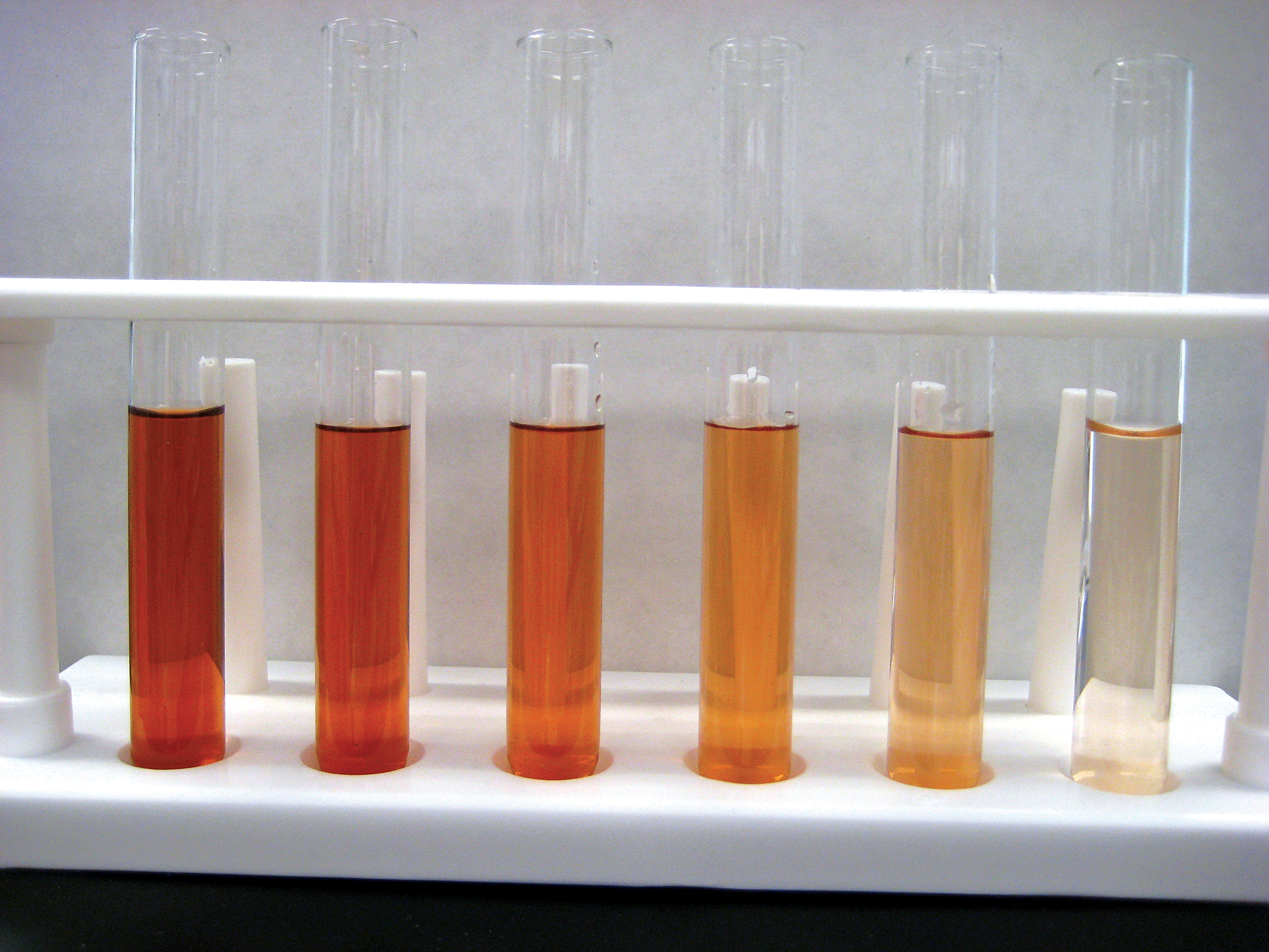 peroxidase enzyme lab Peroxidase is an enzyme found in a wide variety of organisms, from plants to humans to bacteria its function is to break down hydrogen peroxide (h2o2), which is one of the toxins produced as a byproduct of using oxygen for respiration.