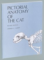 Pictorial Anatomy of the Cat Dissection Guide for Biology and Life Science