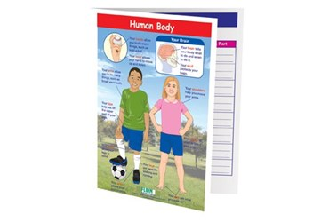 Human Body—NewPath Visual Learning Guide