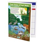 Food Chains & Food Webs—NewPath Visual Learning Guide