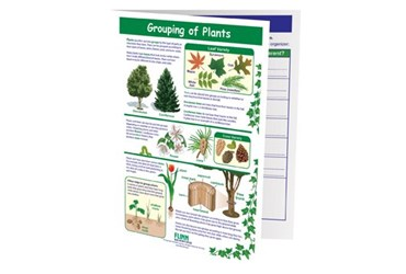 Grouping of Plants—NewPath Visual Learning Guide