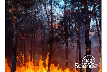 360Storylines - Forest Fires, 1-Year Access