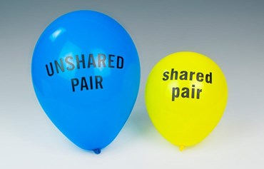 Valence Shell Shared Pair Electron Balloons