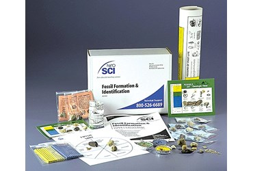 Fossil Formation and Identification Kit for Geology