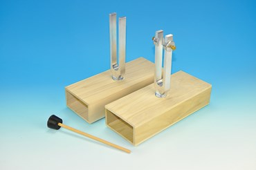 Sympathetic and Differential Tuning Fork Set