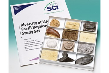 Diversity of Life Fossil Replica Set for Geology