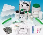 Soil Contamination Laboratory Kit for Forensics and Environmental Science