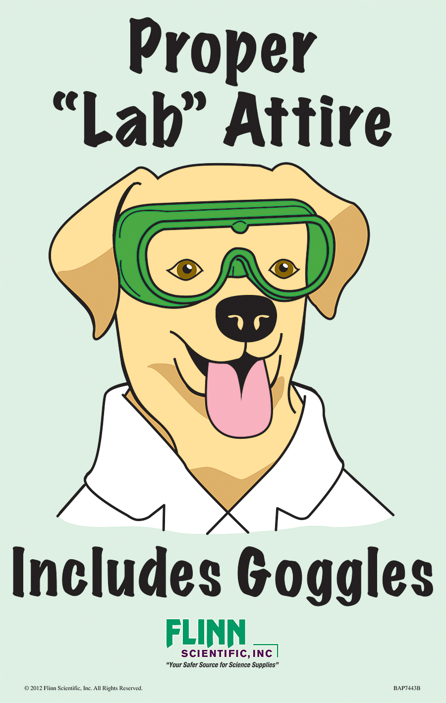 flinn safety posters goggle scientific favorite