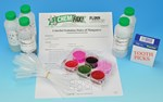 Colorful Oxidation States of Manganese Oxidation-Reduction Chemical Demonstration Kit