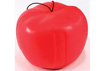 Newton's Apple Model for Physical Science and Physics