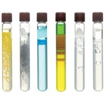 Growing Crystals in Gels Introductory Chemistry Laboratory Kit