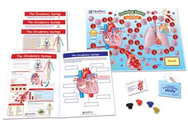 The Circulatory System - NewPath Science Learning Center
