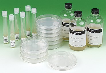 Nutrient Agar Prepared Bottles