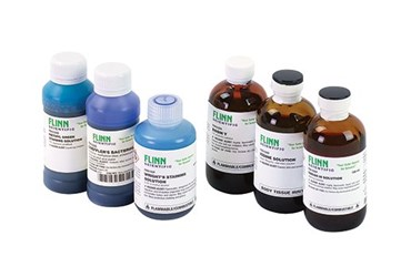 Basic Stain Set for Microscopy Studies