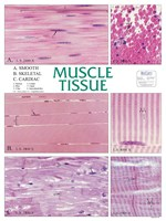 Muscle Tissue Chart for Anatomy Studies