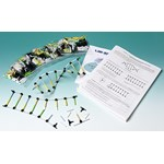 Molecular Model of DNA and Its Replication Activity Kit for Biology and Life Science