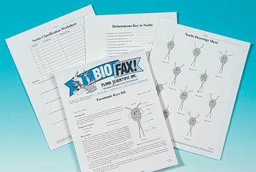 Taxonomic Keys Student Activity Kit for Biology and Life Science