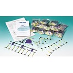 DNA and RNA Protein Synthesis Kit for Biology and Life Science