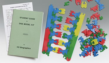 Student DNA Model Kit for Biology and Life Science