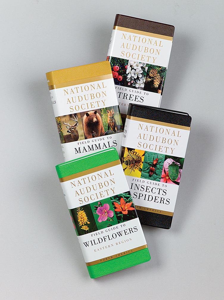 Audubon Field Guide, Wildflowers - $7   Books For Sale ...