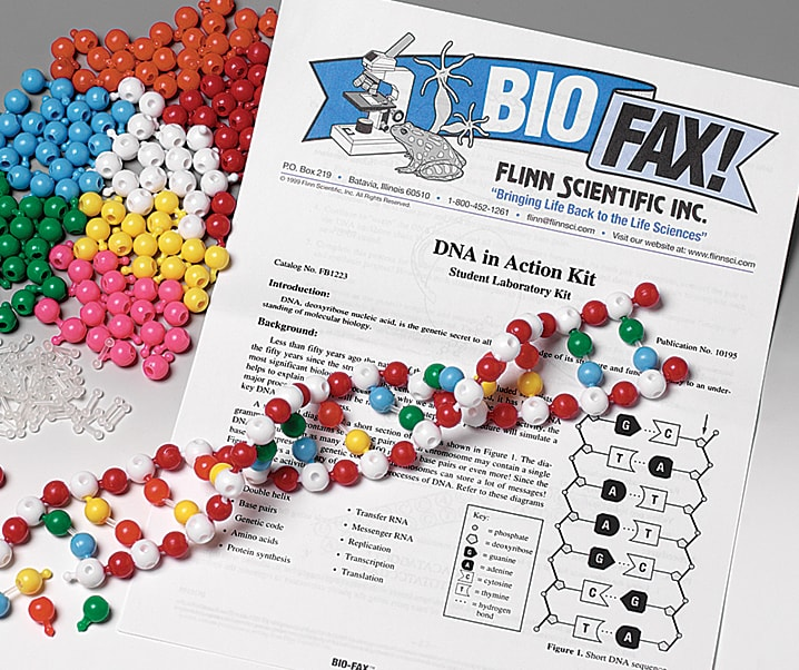 Dna in actionsuper value kit dna in action activity kit for biology and life science solutioingenieria Choice Image