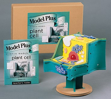 Plant Cell Model Kit for Biology and Life Science