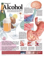 Dangers of Alcohol Chart