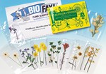 Wildflower Identification Activity Kit for Biology and Life Science