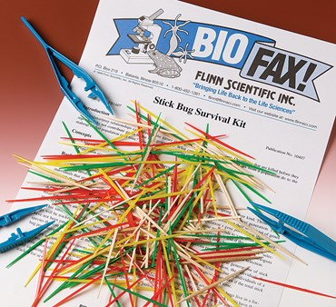 Stick Bug Survival and Natural Selection Laboratory Kit for Biology and Life Science