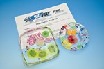 Make Your Own Cell Laboratory Kit for Biology and Life Science