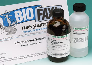 Chromosome Smears Laboratory Kit for Biology and Life Science