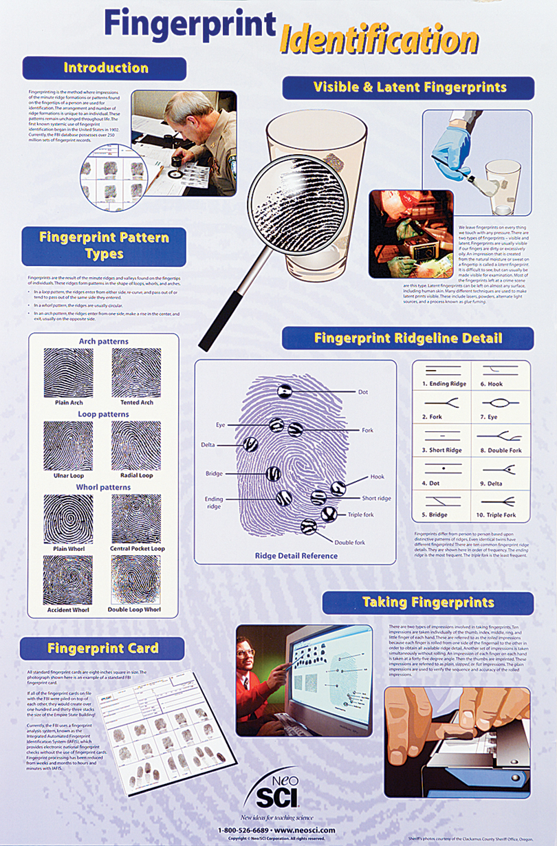 Fingerprint Identification Poster, Paper