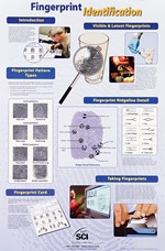 Fingerprint Identification Poster