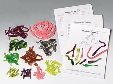 Fun with Classification Activity Kit for Biology and Life Science