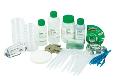 Structure of Plant Tissues Laboratory Kit for Classic AP* Biology Lab 9B (3 Groups)