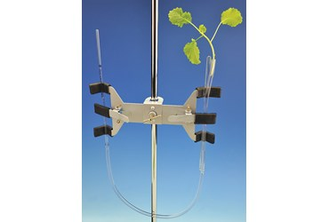 Transpiration Classic Lab Kits for AP® Biology