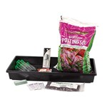 Stomata and Transpiration Rates Botany Laboratory Kit for Biology and Life Science
