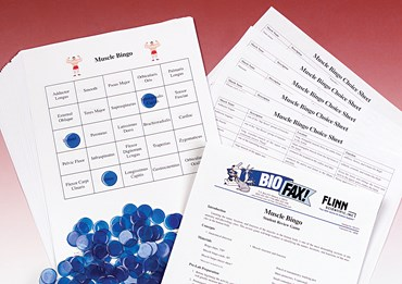 Muscular System Bingo Game for Anatomy and Physiology