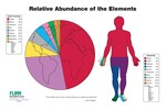 Relative Abundance of the Elements Poster