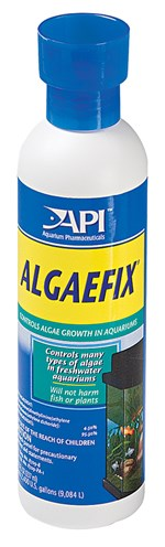 Algae Control for Aquariums