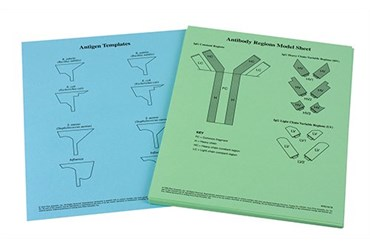 Antibody Function and Epidemiology Laboratory Kit for Biology and Life Science