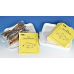 Fish Classroom Dissection Kit for Biology and Life Science