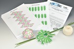 Constructing Model Viruses Activity Kit for Biology and Life Science