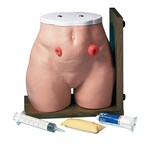 3B Scientific® Ostomy Care Simulator for Nursing and CTE