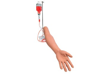 3B Scientific® I.V. Injection Arm for Nursing and CTE