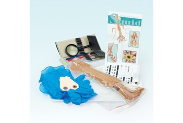 Animal Anatomy Explorer Kit with Dissection Tools