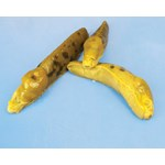 Preserved Garden Slug, Pkg. of 10