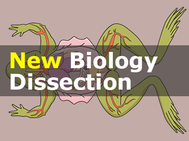 New Biology Dissection