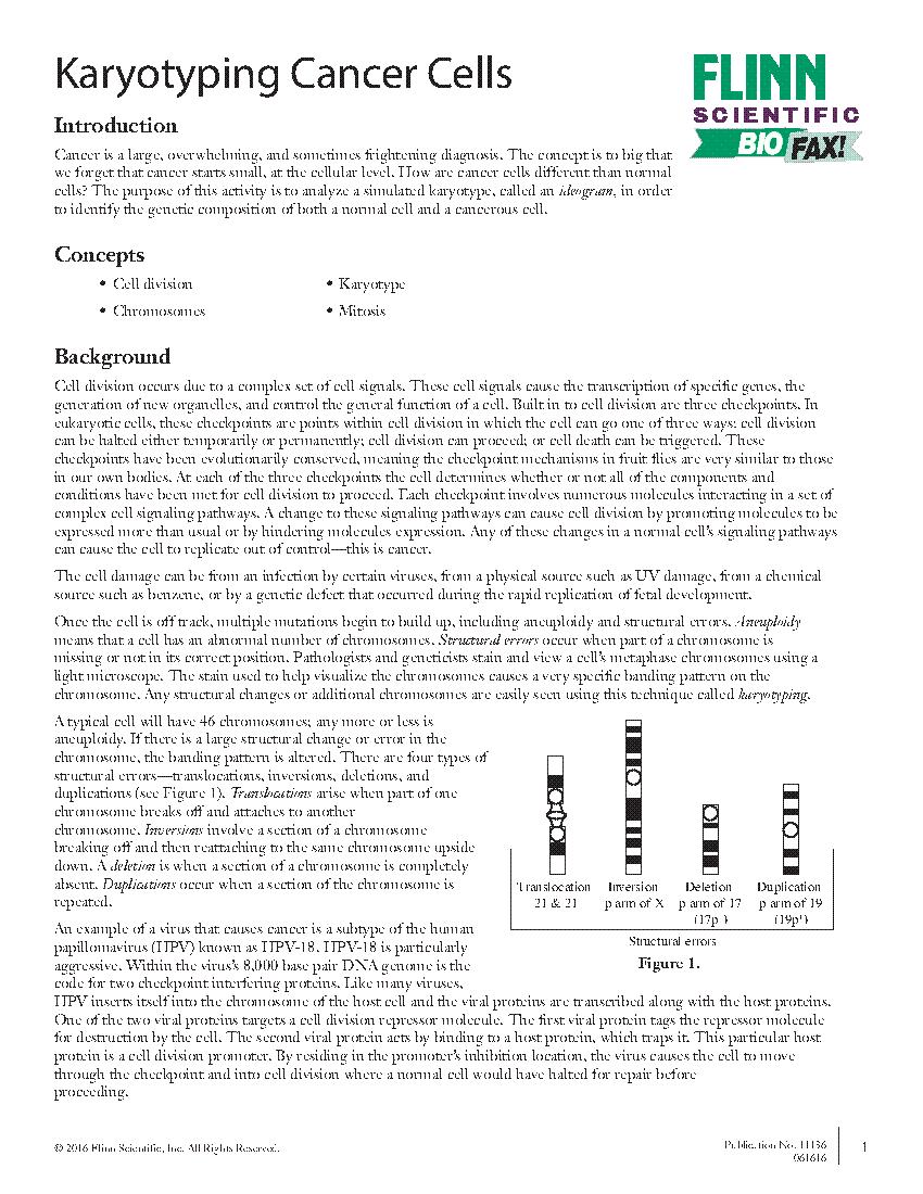 worksheet Biology Karyotype Worksheet Answers worksheet karyotype high school thedanks for 09fa109a7e6f4c7a95962957753794932017 01 20t103436width370height250bgcolorwhite firewa